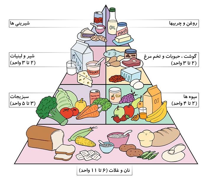 هرم تغذیه دوران بارداری